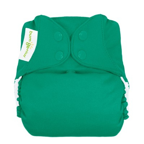bumGenius Freetime All-in-One Cloth Diaper, Hummingbird