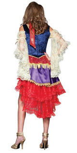 Good Fortune Gypsy Costume back