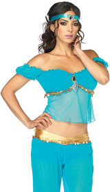 Jasmin Arabian Beauty Costume