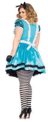 Alice Wonderland Plus Costume back