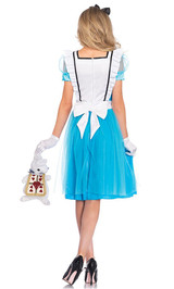 Classic Alice Costume back