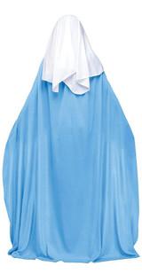 Biblical Mary Womens Costume back