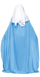 Biblical Mary Womens Costume back