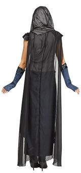 Lady Lionheart Adult Costume back