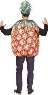Mens Pineapple Costume back