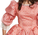 Prairie Elegant Woman Costume