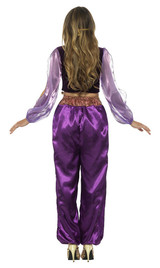 Arabian Princess Woman Costume back