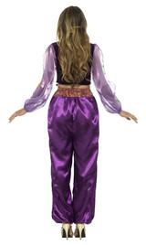 Arabian Princess Woman Costume back