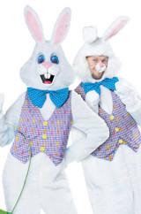classic bunny man mascot costume