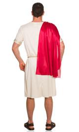 Roman Tunic Costume Back View