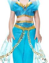 Aladdin's Princess Jasmin Girl Costume Detailed
