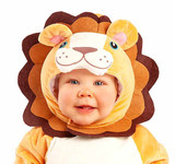 Cute Lion Baby Costume