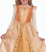 Regal Shimmer Princess Girl Costume