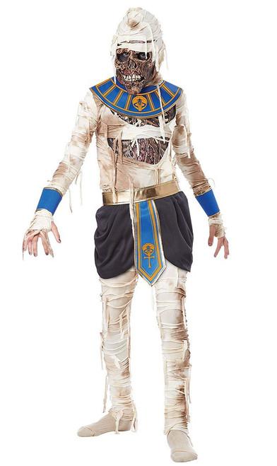 Revenge Mummy Pharaoh Boy Costume