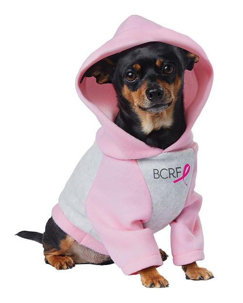 Pink Ribbon Hoodie Pet Costume