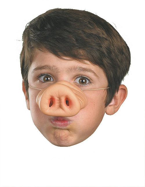 Children's Pig Nose Accessory