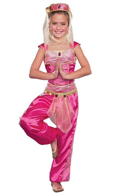 Dream Genie Girls Costume