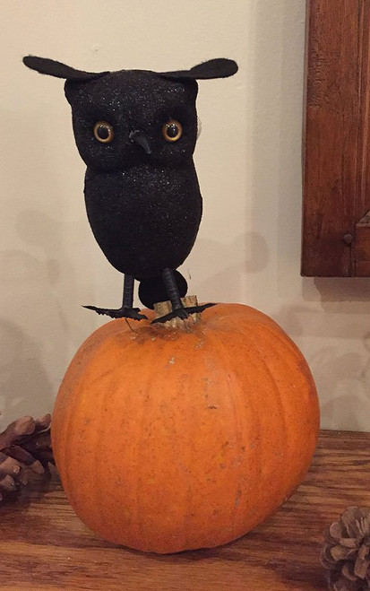 Black Owl Decor