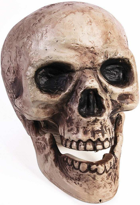 Moving Jaw Skull Head Prop