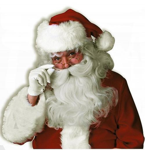 Professional Santa Wig & Beard