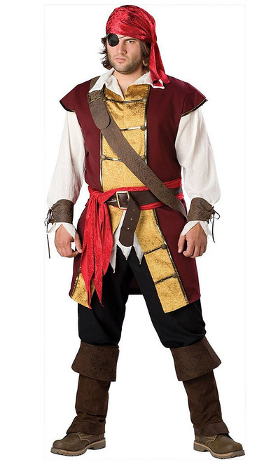 Swashbuckler Pirate Plus Costume