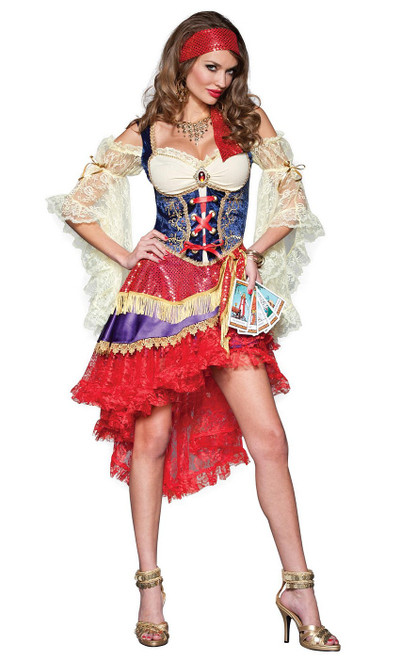 Good Fortune Gypsy Costume