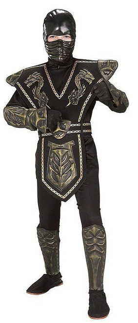 Dragon Warrior Ninja Costume