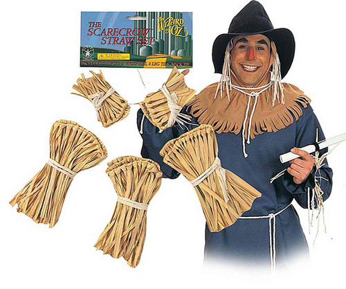 Wizard Oz Scarecrow Straw Kit