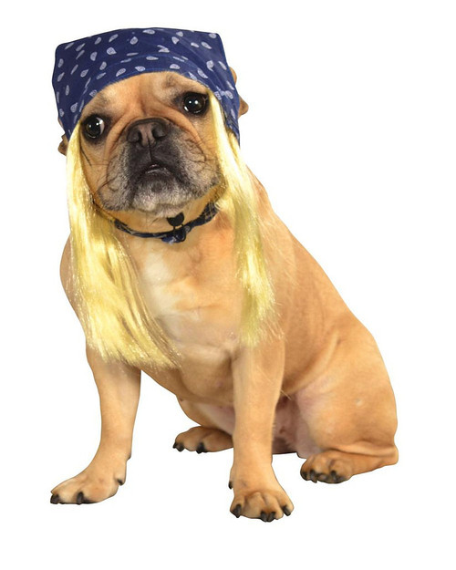 Bandana with Hair for Pets