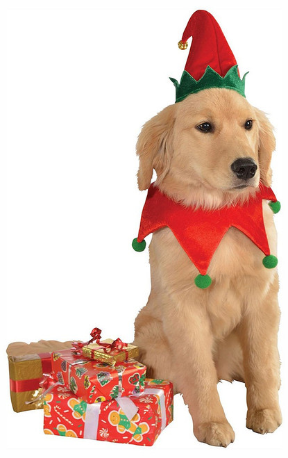 Elf Pet Costume Hat and Bell