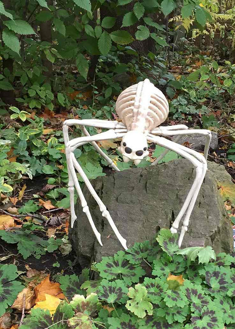 Skeleton Spider Decor