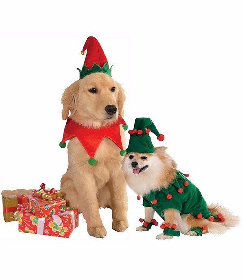 Elf Group Pet Costume