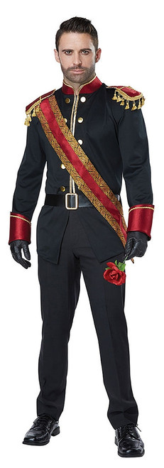 Dark Prince Charming Costume