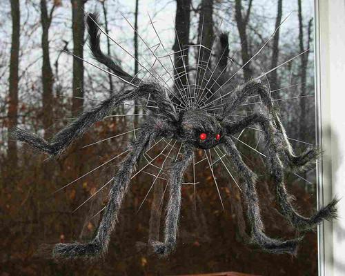 "Spider Crasher Black 30"""