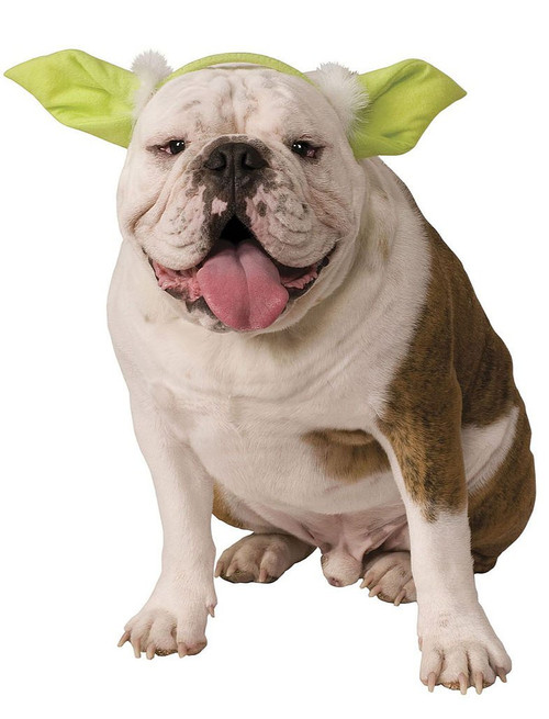 Dog Headwear Yoda Ears