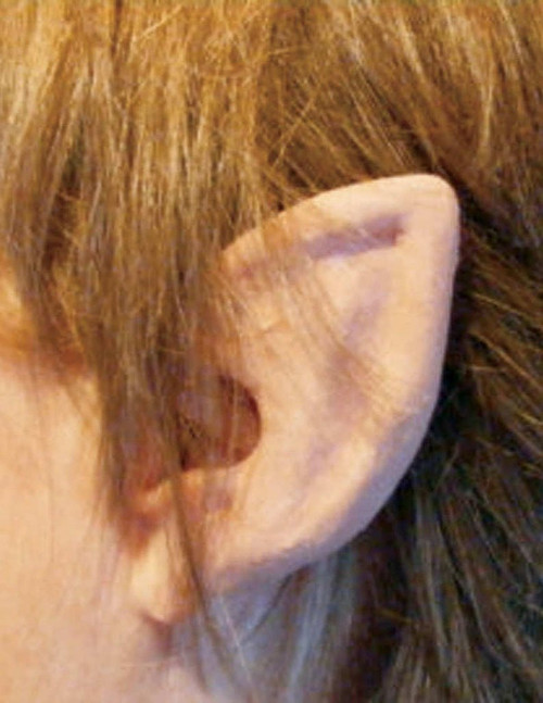 Elf Flexi Ears