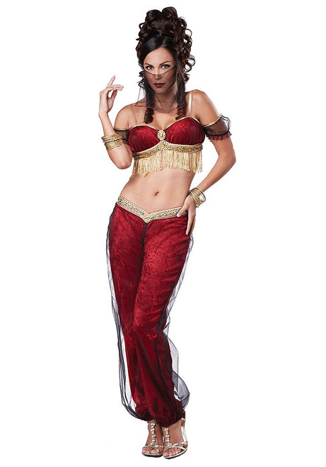 Dreamy Genie Womens Belly Dancer Costume
