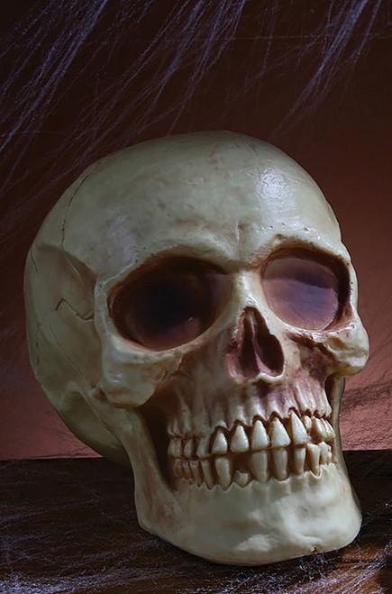 Skull Halloween Decor