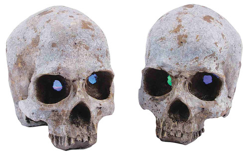 Skull with Color Change Eyes