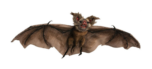 Realistic Bat Halloween Decoration 35""