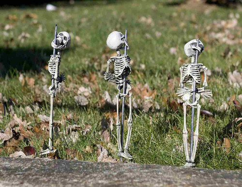 Staked Skeletons Lawn Decor