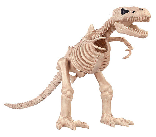 T-Rex Skeleton Decoration 16""
