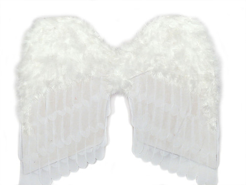 Feather White Wings 24""