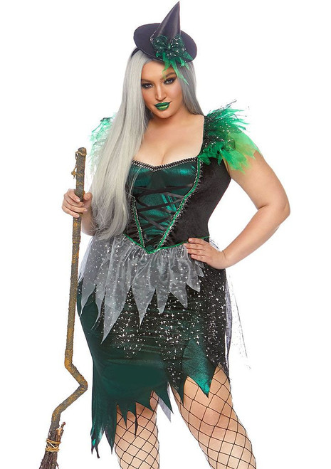 Wicked Witch Plus Woman Costume