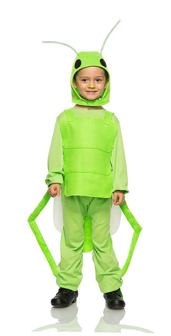 Flying Grasshopper Boy Costume