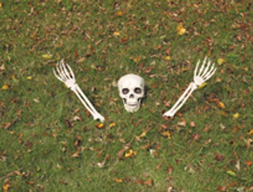 Buried Alive Skeleton Halloween Decor