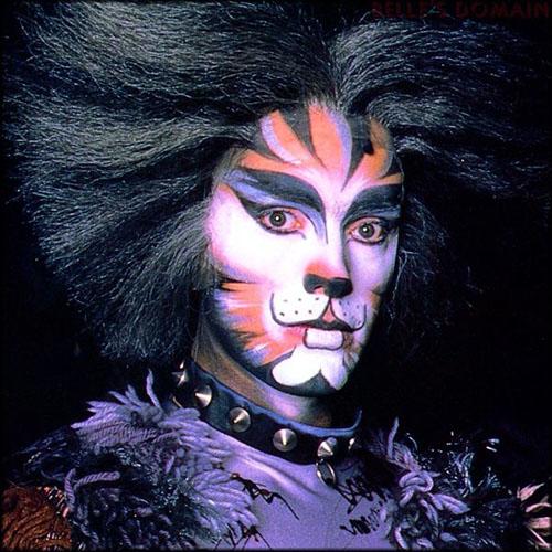 Cats the Musical Makeup