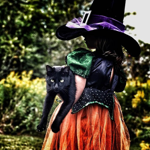 Witch with Black Cat Costume Idea