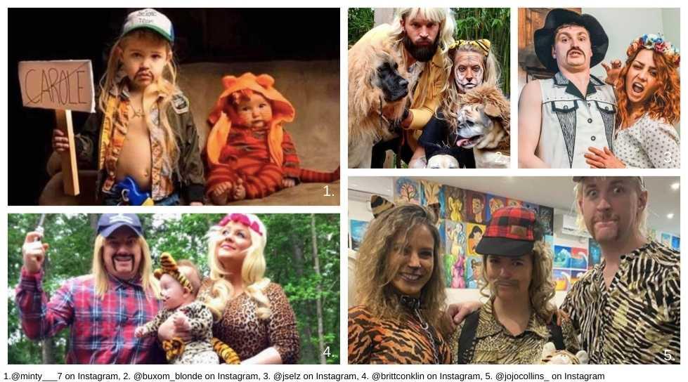 Tiger King Blog