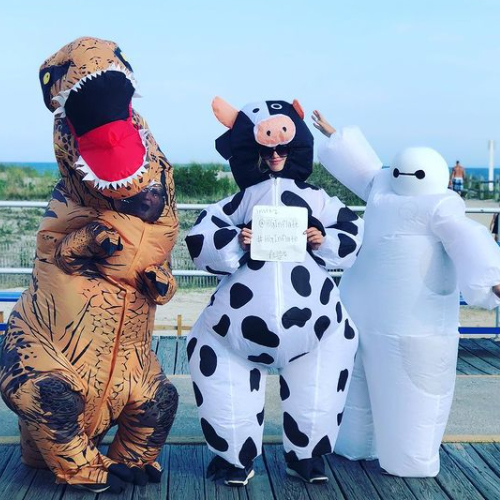 Baymax, Cow, Dinosaur Inflatable Costumes